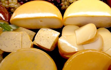 fromage aux probiotiques immunite
